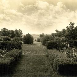 Looking over DuPage Valley from Thornhill residence sunroom through hedges
