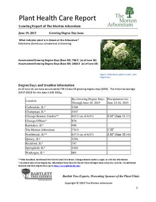 Plant Health Care Report: 2015, June 19 Growing Degree Day issue