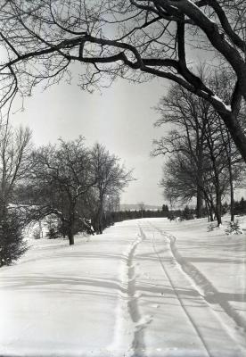 Morton residence drive in winter