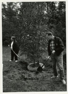 AT&T planting of a donated tree