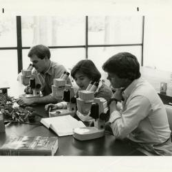 Peter Linsner, Marilyn Halperin, and Kris Bachtell studying specimens under microscopes in the Botany Lab