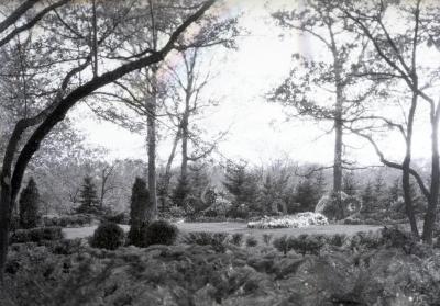 Flowers around Joy Morton burial plot