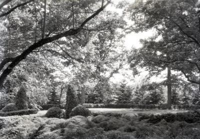 Joy Morton burial plot