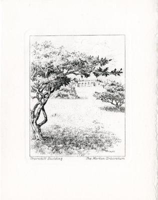 Notecards: Views of the Arboretum