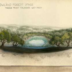 Arboretum Landscape Teaching Aid Series: Forest Met Prairie