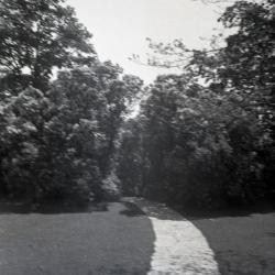 Joy Path near Morton residence library