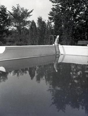 Morton residence swimming pool corner with dog statue