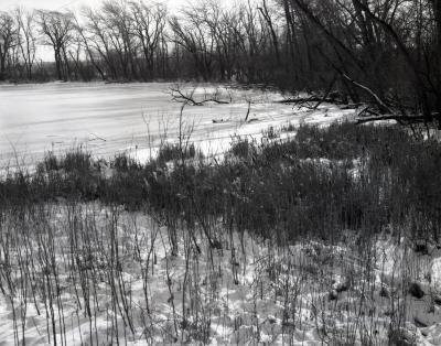 Puffer Lake southern boundary