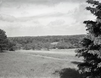 Meadow Lake excavation, view from Frost Hill area