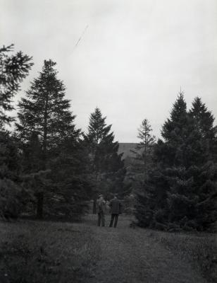 Joy Morton and O. C. Simonds at Arnold Arboretum