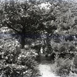 Joy and Margaret Gray Morton on Joy Path