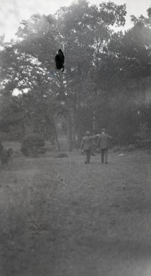 Joy Morton and O. C. Simonds pointing at trees at Arnold Arboretum