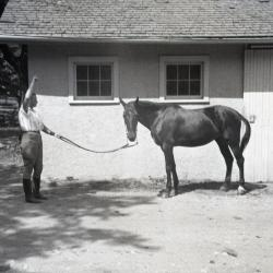 Sterling Morton's horse Diana with female trainer's arm raised