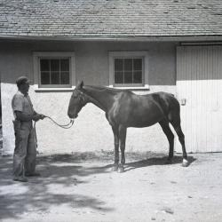 Sterling Morton's horse Diana with male trainer