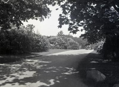 Car entering Arboretum west entrance at Route 53
