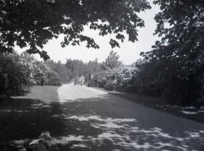 Car driving out of Arboretum west entrance toward Route 53