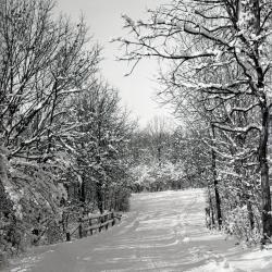 Lake Road in winter across bridge