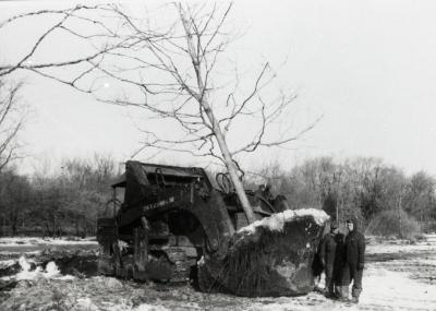 Kluckhohn tree mover moving balled tree when Route 53 was made four lanes