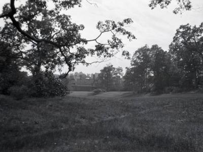 Grass area and trees with water in distance at Arnold Arboretum
