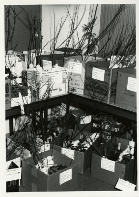Members' Cooperative Research Program, plants in boxes in Research Building basement