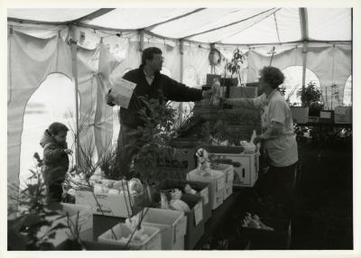 Members' Cooperative Research Program, member receiving plant order in tent
