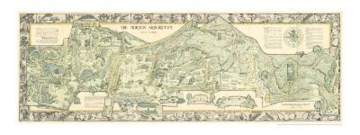 Morton Arboretum Map
