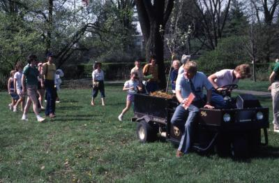 Small tree in cart for planting at Arborfest