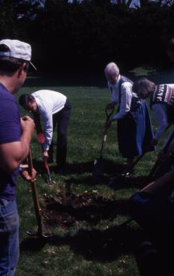 Gerry Donnelly and employees digging hole for Arbor Day tree planting
