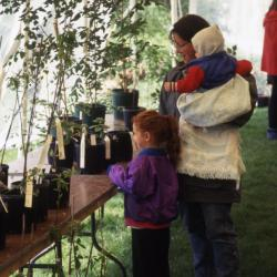 Woman with two children looking at plants in Arbor Week surplus plant sale tent