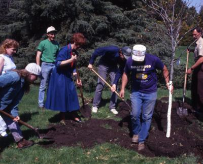 Employees digging hole for Arbor Day tree planting