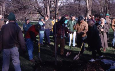 Employees shoveling soil around newly planted tree at Arbor Day employee tree planting