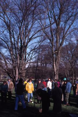 Employees gathered for Arbor Day employee tree planting
