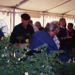 Customers looking at plants during Arbor Day Plant Sale