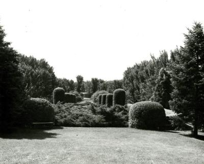 View of the Hedge Garden and Administration Building at The Morton Arboretum in Lisle, Illinois, circa 1960