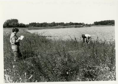 Des Plaines River Project, researchers working near water