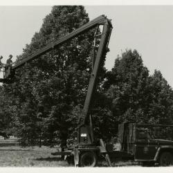 Kirsten Spravka and Gary Watson in cherry picker doing research near crown of tree