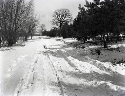 Spring Road looking north in winter
