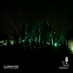Illumination, Winter 2015-2016, Chicago Symphony Orchestra Symphony Woods - long