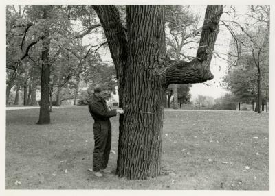 Rick Hootman doing tree inventory at Northwestern University
