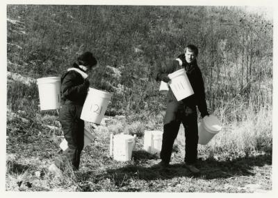 Salt study, Rose Reid and Rick Hootman carrying plastic buckets on berm