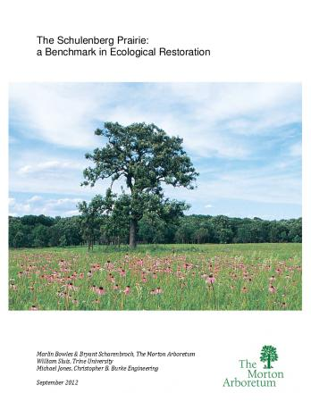 The Schulenberg Prairie: A Benchmark in Ecological Restoration