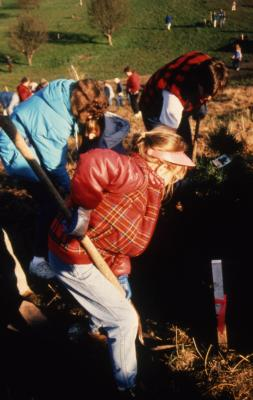 Young girl with shovel and others digging hold for tree during Earth Day celebration and berm planting