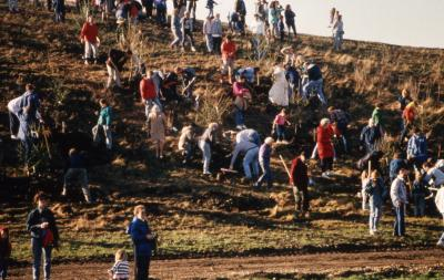 View of crowd planting trees from bottom of berm toward top during Earth Day celebration and berm planting