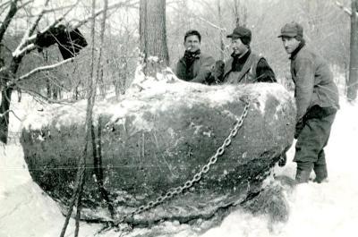 Three men (Roy Burnside at right) moving huge root balled tree
