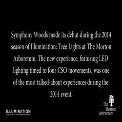 Illumination, Winter 2015-2016, Chicago Symphony Orchestra Symphony Woods - short