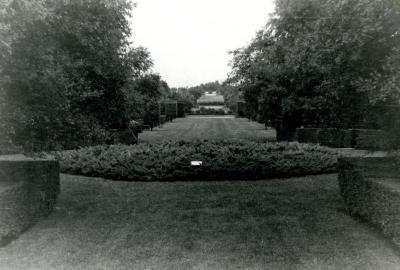 Division 3 Arboretum view with juniperus horizontalis plumos in foreground