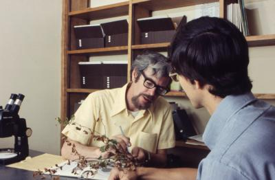 Web Crowley showing plant specimen to Bill Stickney in Plant Clinic