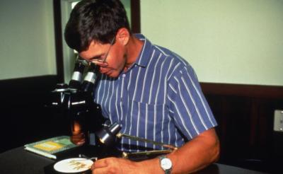 John Beckett looking at plant under microscope
