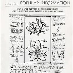 Bulletin of Popular Information V. 22 No. 05