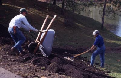 Two grounds staff dumping soil from wheel barrel and raking soil near lake